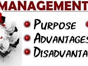 Management-Audit1